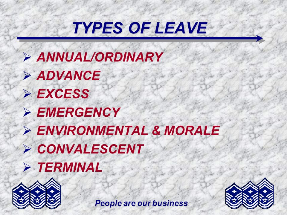 People are our business TYPES OF LEAVE ANNUAL/ORDINARY ADVANCE EXCESS EMERGENCY ENVIRONMENTAL & MORALE CONVALESCENT TERMINAL