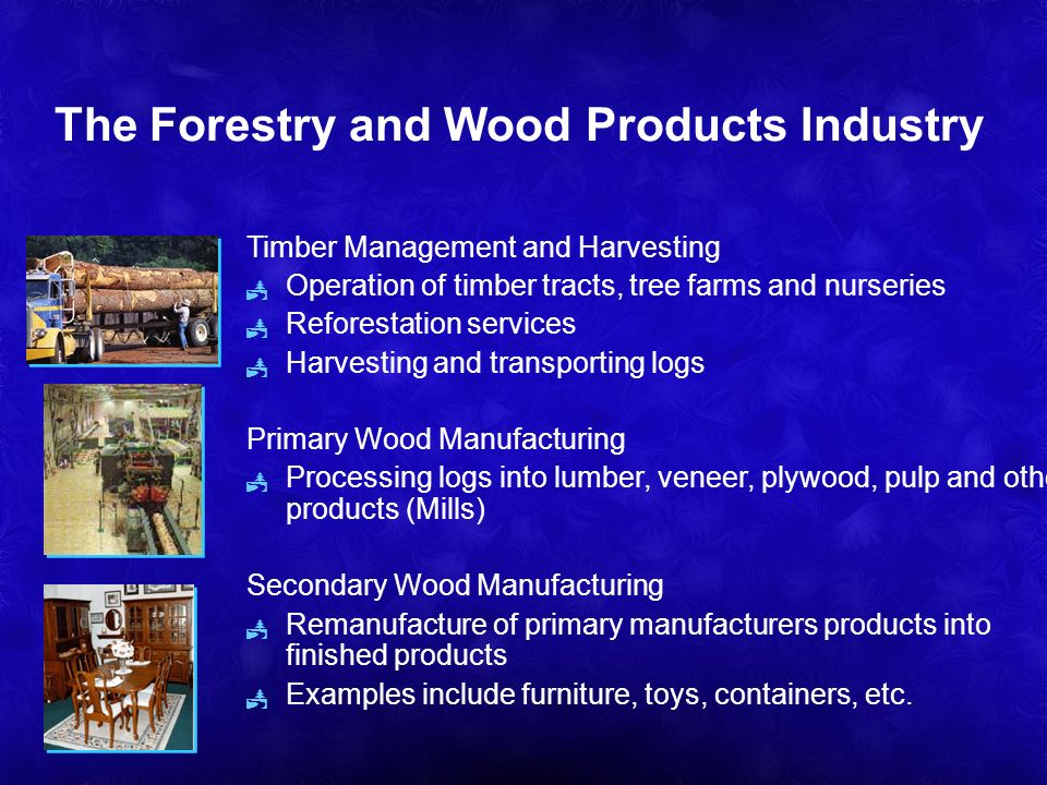The Forestry and Wood Products Industry Timber Management and Harvesting Operation of timber tracts, tree farms and nurseries Reforestation services Harvesting and transporting logs Primary Wood Manufacturing Processing logs into lumber, veneer, plywood, pulp and other products (Mills) Secondary Wood Manufacturing Remanufacture of primary manufacturers products into finished products Examples include furniture, toys, containers, etc.