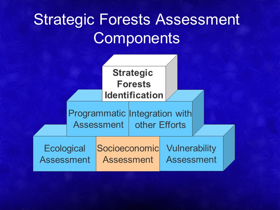 Strategic Forests Assessment Components Ecological Assessment Socioeconomic Assessment Vulnerability Assessment Programmatic Assessment Integration with other Efforts Strategic Forests Identification