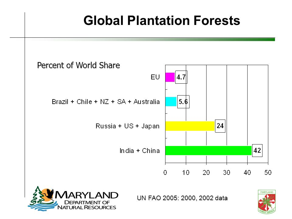 Global Plantation Forests Percent of World Share UN FAO 2005: 2000, 2002 data