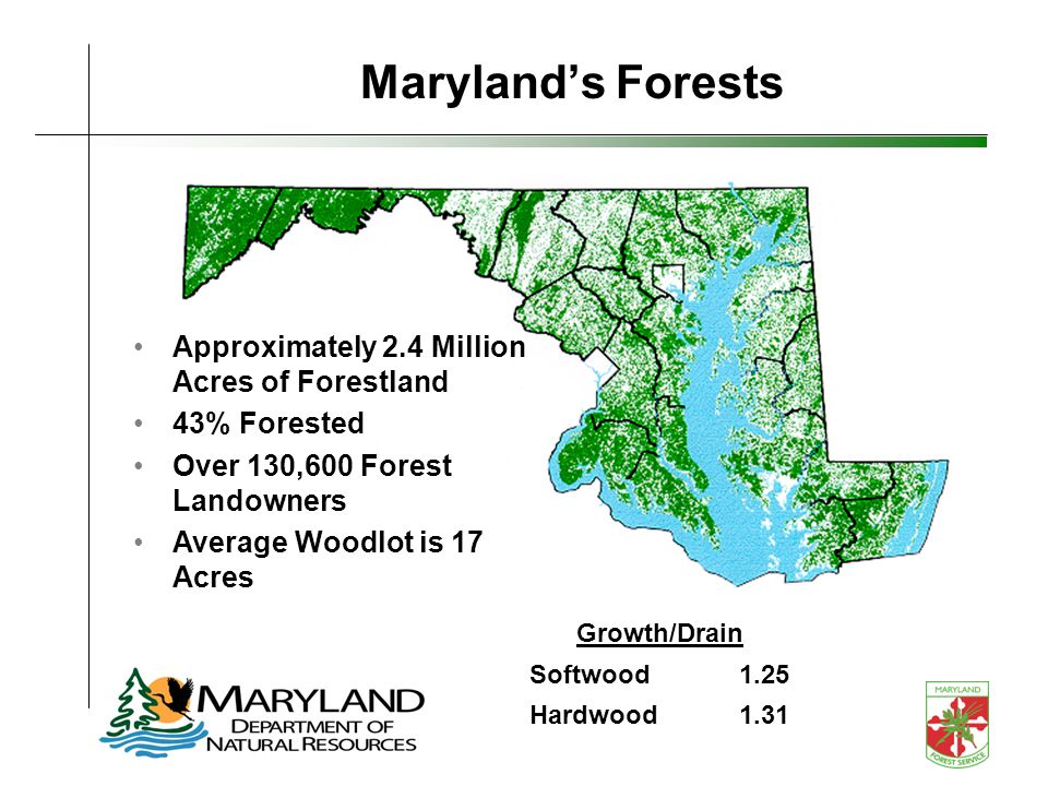 Marylands Forests Growth/Drain Softwood1.25 Hardwood1.31 Approximately 2.4 Million Acres of Forestland 43% Forested Over 130,600 Forest Landowners Average Woodlot is 17 Acres