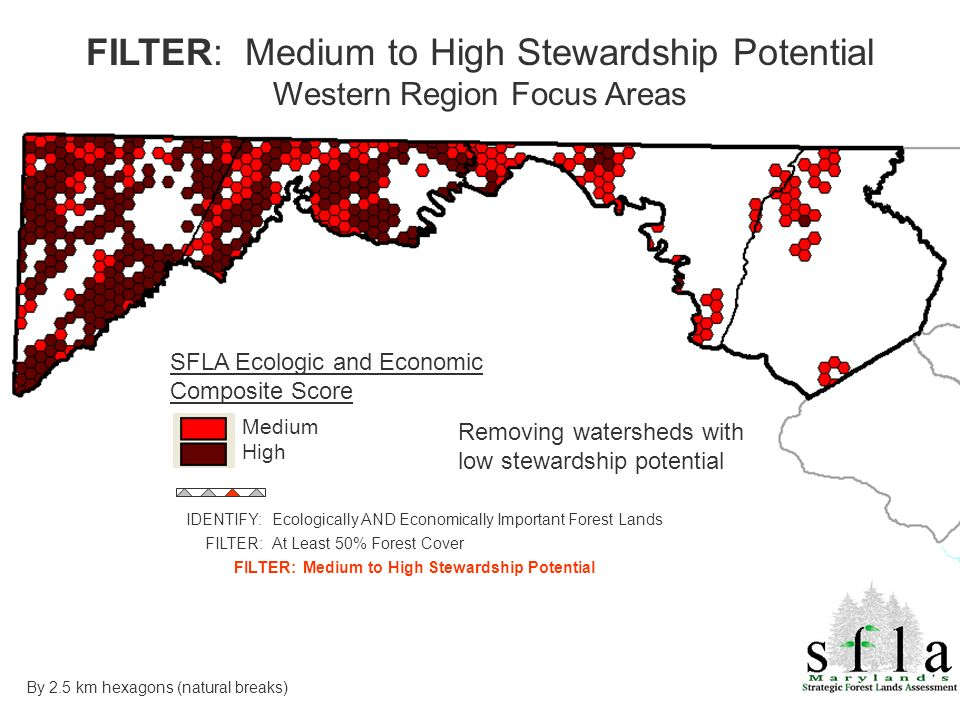 SFLA Ecologic and Economic Composite Score Medium High Removing watersheds with low stewardship potential FILTER: Medium to High Stewardship Potential Western Region Focus Areas By 2.5 km hexagons (natural breaks) IDENTIFY: Ecologically AND Economically Important Forest Lands FILTER: At Least 50% Forest Cover FILTER: Medium to High Stewardship Potential