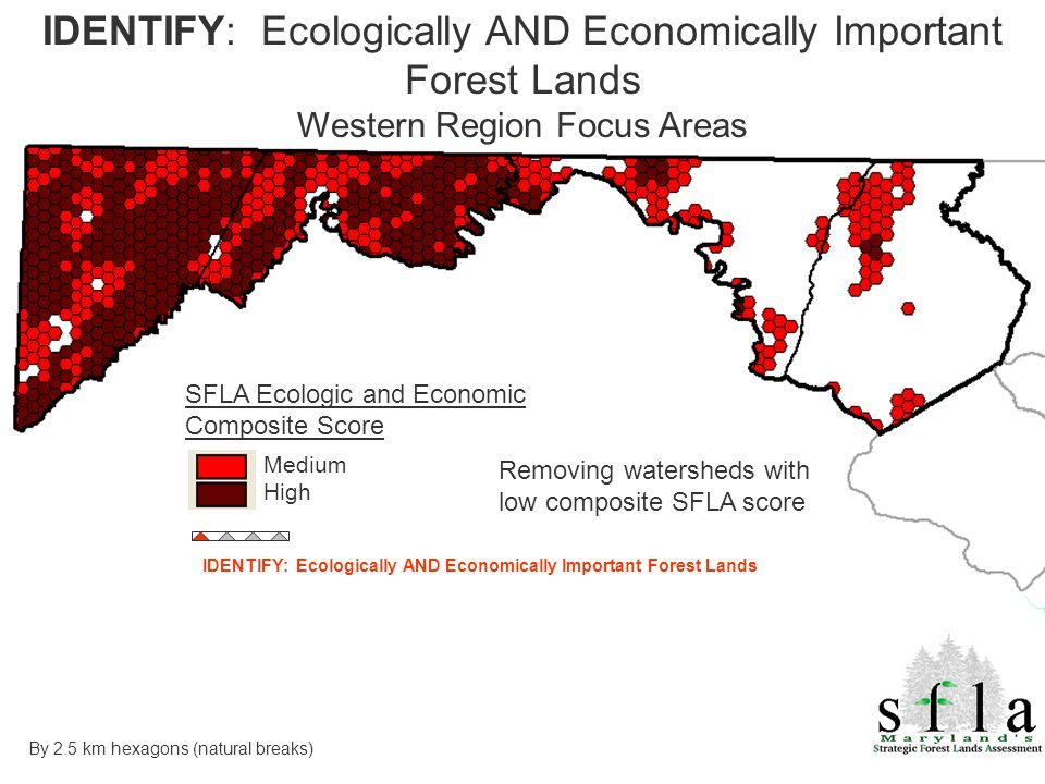SFLA Ecologic and Economic Composite Score Medium High Removing watersheds with low composite SFLA score IDENTIFY: Ecologically AND Economically Important Forest Lands Western Region Focus Areas By 2.5 km hexagons (natural breaks) IDENTIFY: Ecologically AND Economically Important Forest Lands