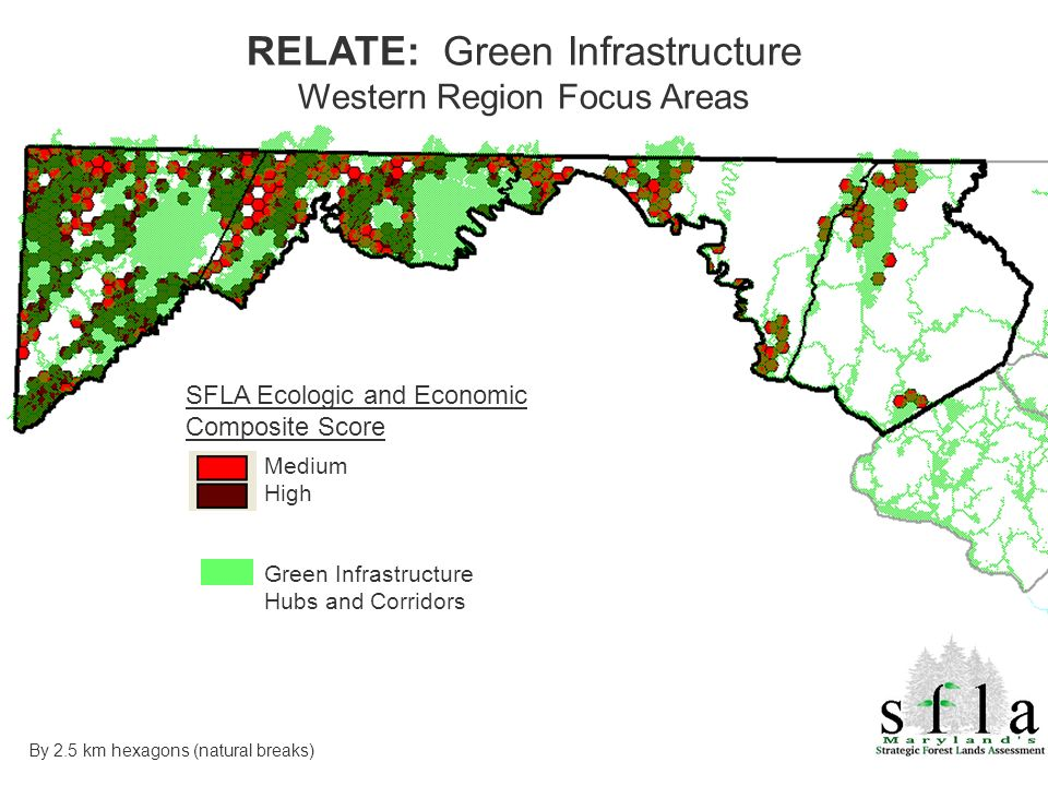 SFLA Ecologic and Economic Composite Score Medium High Green Infrastructure Hubs and Corridors RELATE: Green Infrastructure Western Region Focus Areas By 2.5 km hexagons (natural breaks)