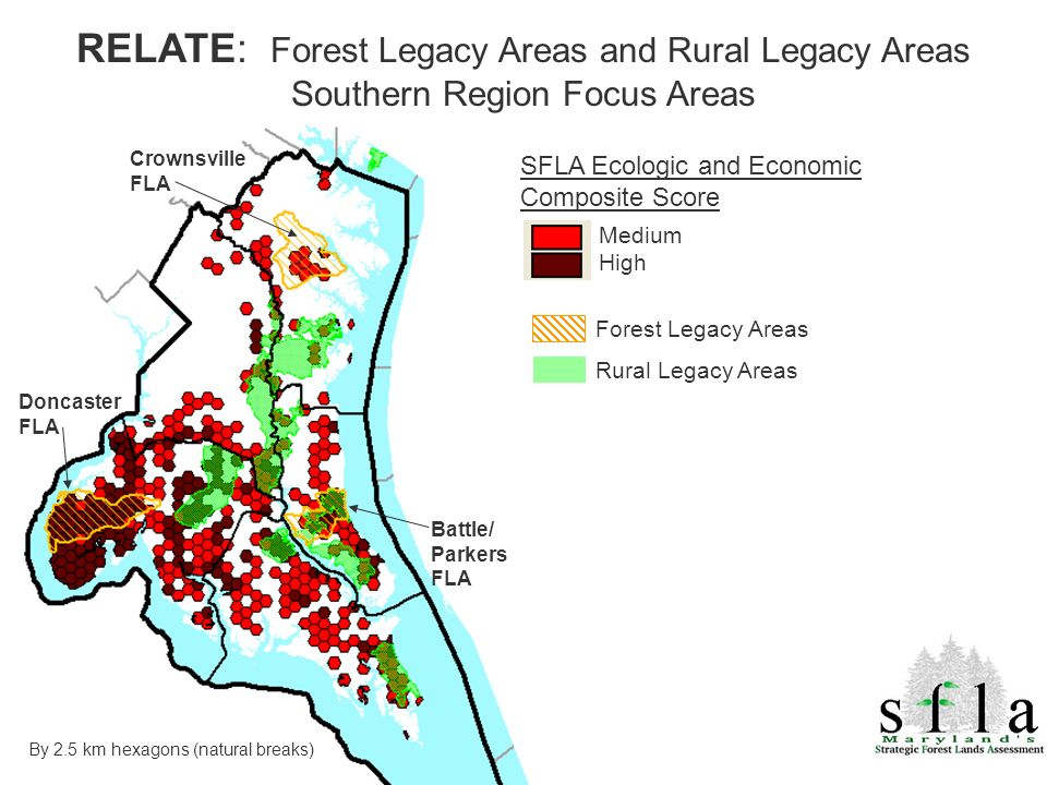 Forest Legacy Areas Rural Legacy Areas Doncaster FLA Crownsville FLA By 2.5 km hexagons (natural breaks) SFLA Ecologic and Economic Composite Score Medium High RELATE: Forest Legacy Areas and Rural Legacy Areas Southern Region Focus Areas Battle/ Parkers FLA