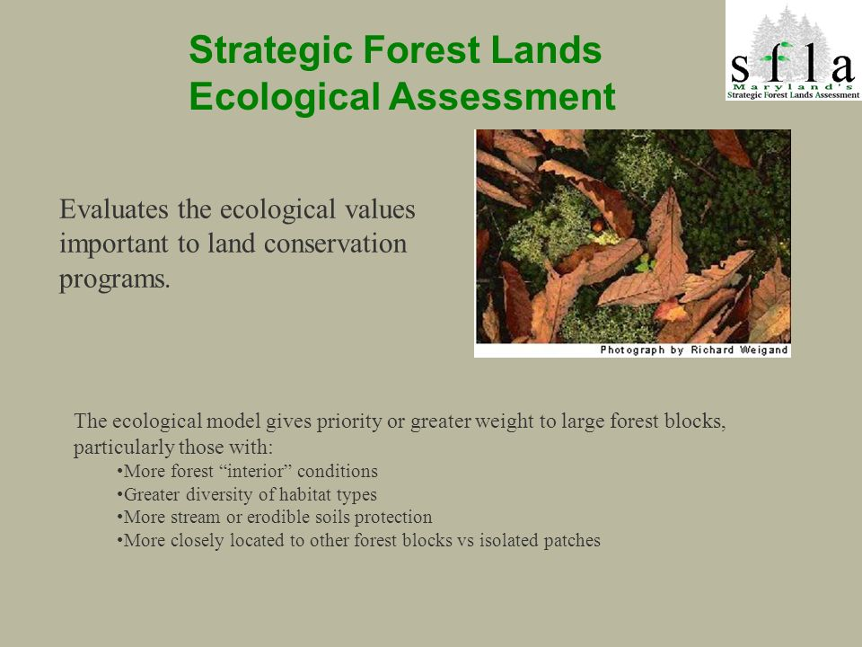 Strategic Forest Lands Ecological Assessment The ecological model gives priority or greater weight to large forest blocks, particularly those with: More forest interior conditions Greater diversity of habitat types More stream or erodible soils protection More closely located to other forest blocks vs isolated patches Evaluates the ecological values important to land conservation programs.
