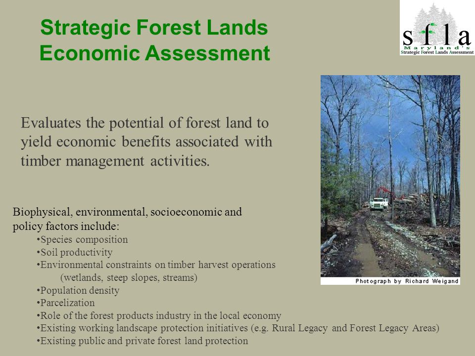 Strategic Forest Lands Economic Assessment Biophysical, environmental, socioeconomic and policy factors include: Species composition Soil productivity Environmental constraints on timber harvest operations (wetlands, steep slopes, streams) Population density Parcelization Role of the forest products industry in the local economy Existing working landscape protection initiatives (e.g.