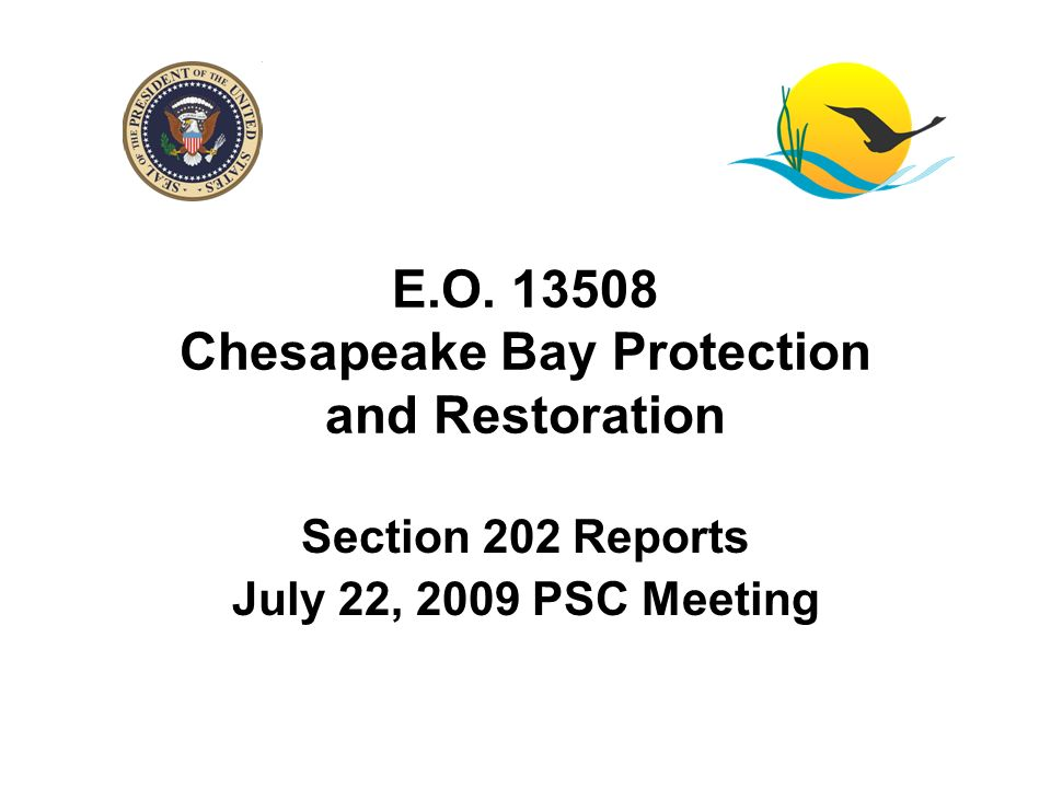 E.O. 13508 Chesapeake Bay Protection and Restoration Section 202 Reports July 22, 2009 PSC Meeting