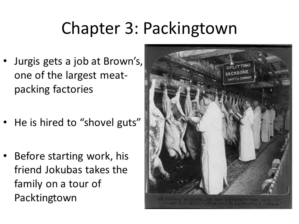 Chapter 3: Packingtown Jurgis gets a job at Browns, one of the largest meat- packing factories He is hired to shovel guts Before starting work, his friend Jokubas takes the family on a tour of Packtingtown