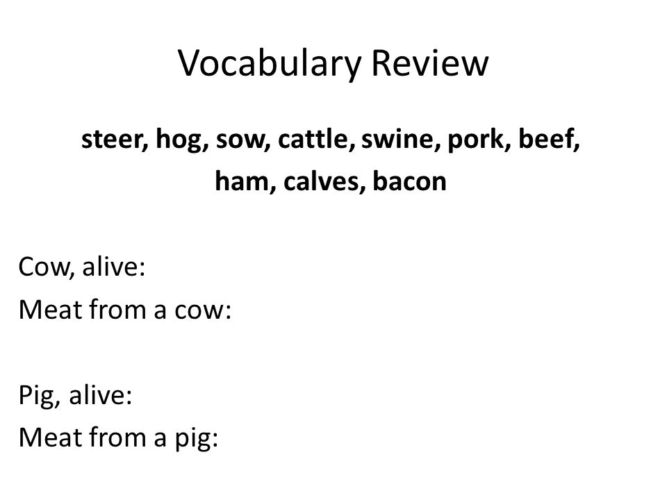 Vocabulary Review steer, hog, sow, cattle, swine, pork, beef, ham, calves, bacon Cow, alive: Meat from a cow: Pig, alive: Meat from a pig: