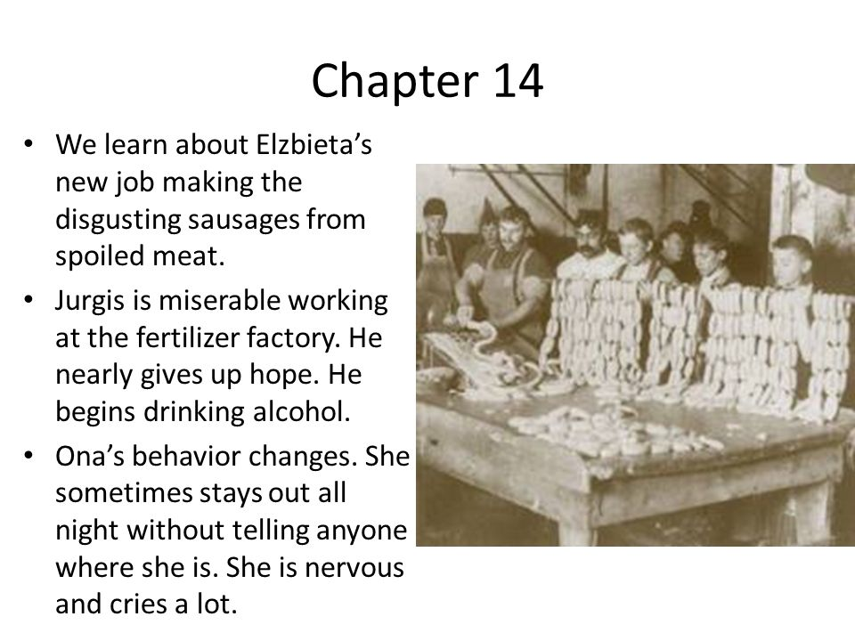 Chapter 14 We learn about Elzbietas new job making the disgusting sausages from spoiled meat.