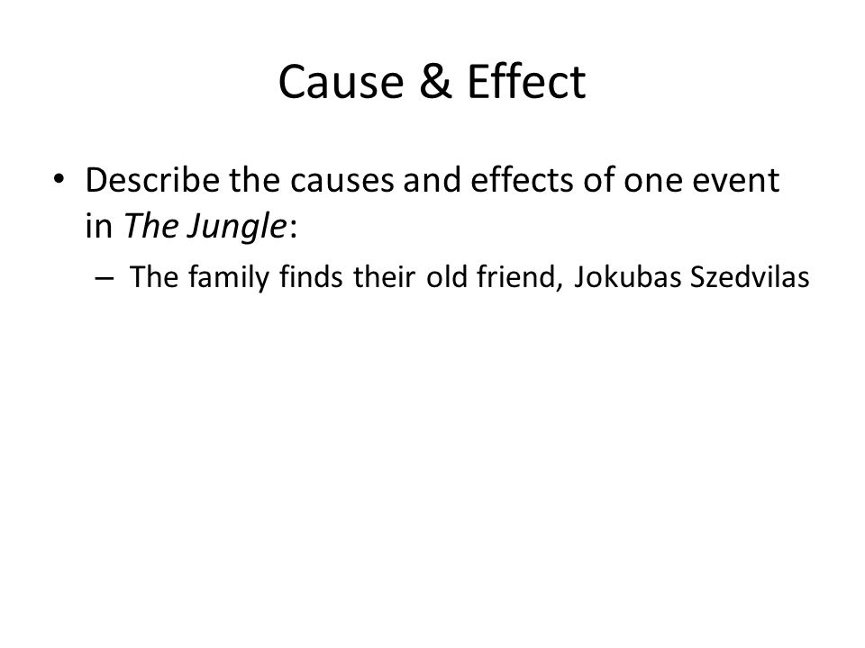 Cause & Effect Describe the causes and effects of one event in The Jungle: – The family finds their old friend, Jokubas Szedvilas