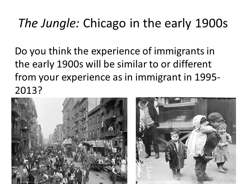 The Jungle: Chicago in the early 1900s Do you think the experience of immigrants in the early 1900s will be similar to or different from your experience as in immigrant in 1995- 2013