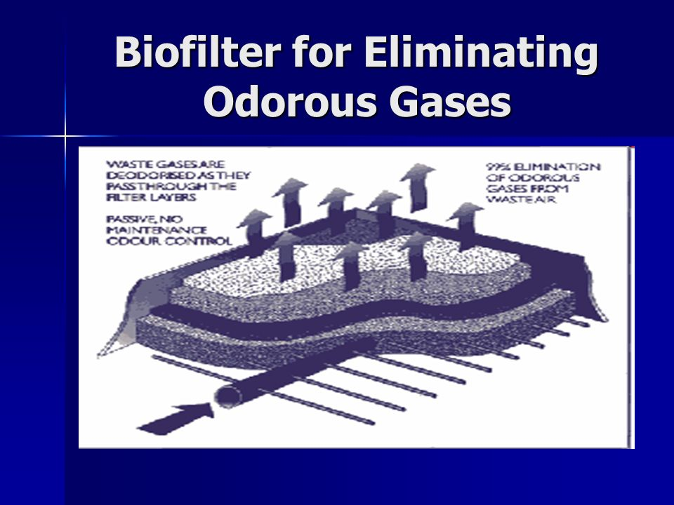 Biofilter for Eliminating Odorous Gases