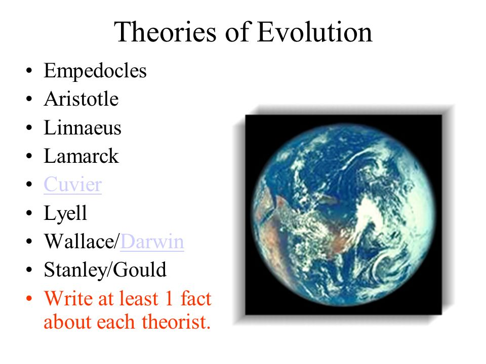 Theories of Evolution Empedocles Aristotle Linnaeus Lamarck Cuvier Lyell Wallace/DarwinDarwin Stanley/Gould Write at least 1 fact about each theorist.