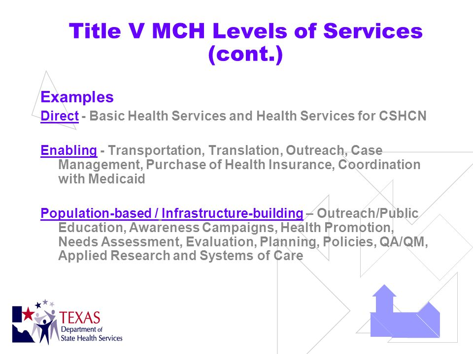Title V MCH Levels of Services