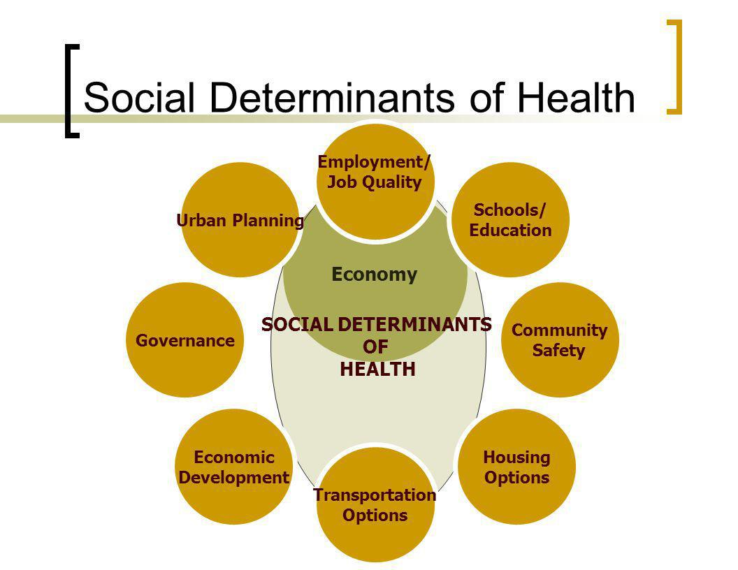 Economy SOCIAL DETERMINANTS OF HEALTH Urban Planning Schools/ Education Employment/ Job Quality Community Safety Housing Options Transportation Options Governance Economic Development Social Determinants of Health