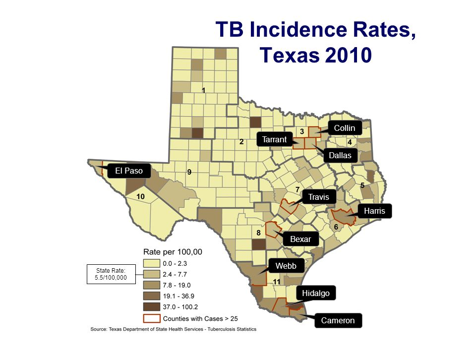 Collin Harris Dallas Tarrant Travis Bexar El Paso Cameron Hidalgo Webb State Rate: 5.5/100,000 TB Incidence Rates, Texas 2010