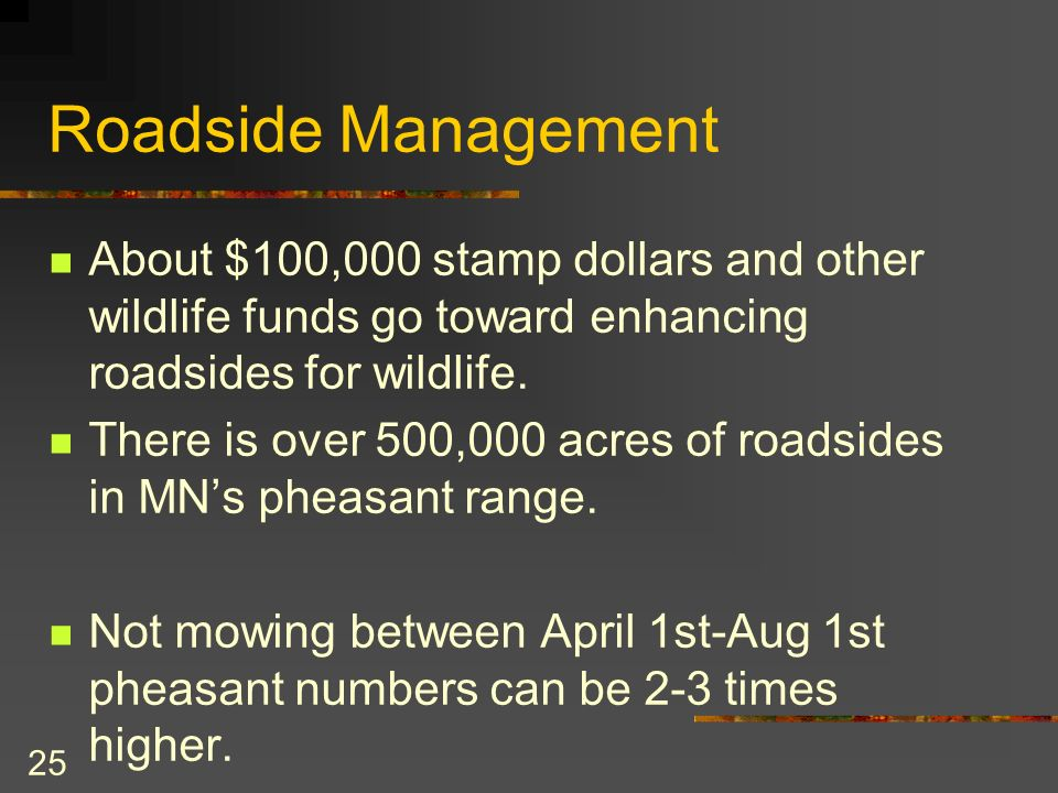 25 Roadside Management About $100,000 stamp dollars and other wildlife funds go toward enhancing roadsides for wildlife.