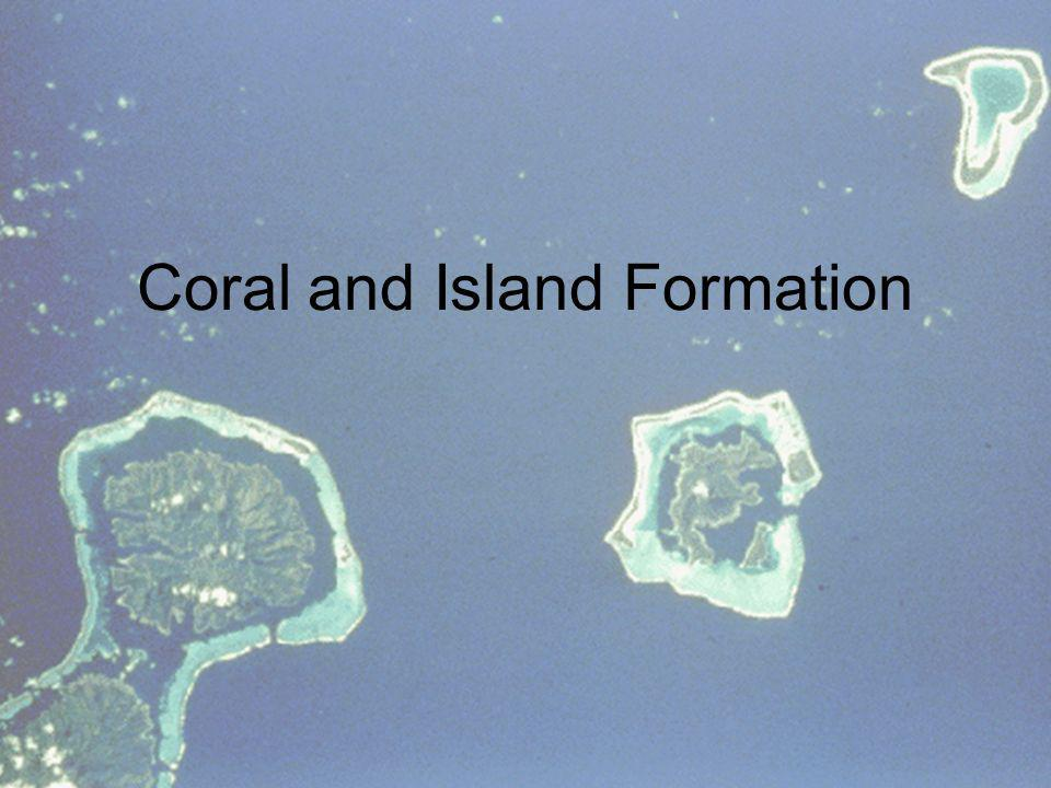 Coral and Island Formation