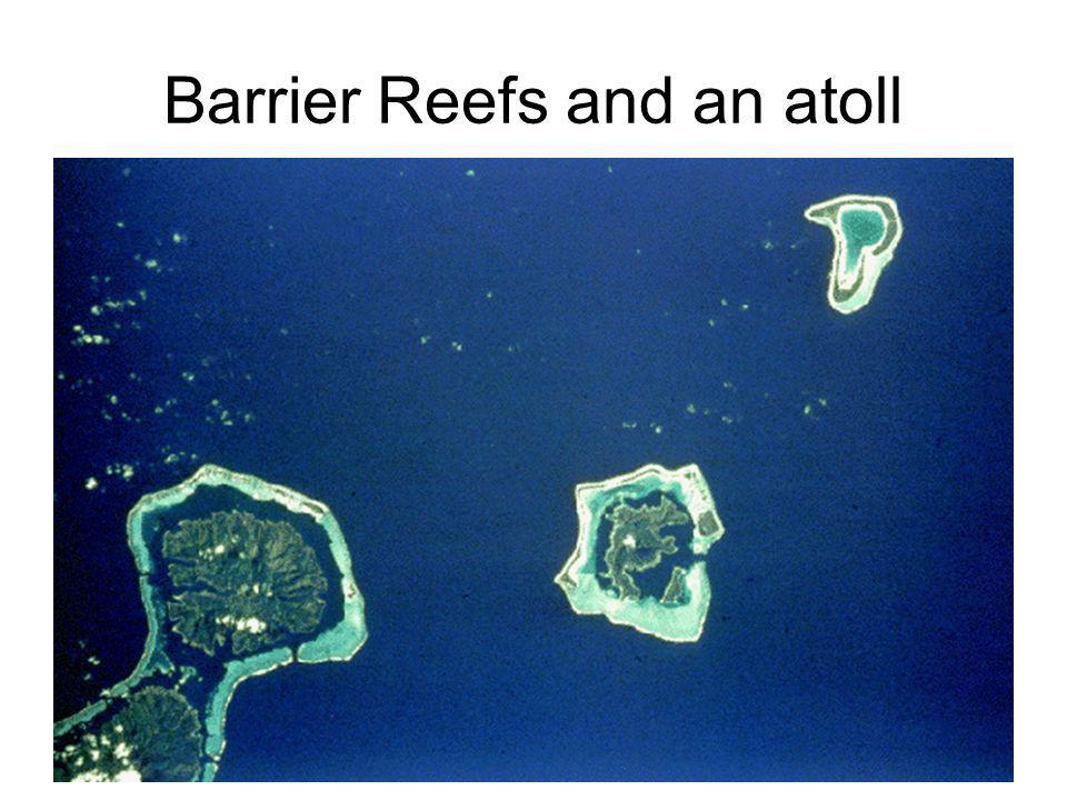 Barrier Reefs and an atoll