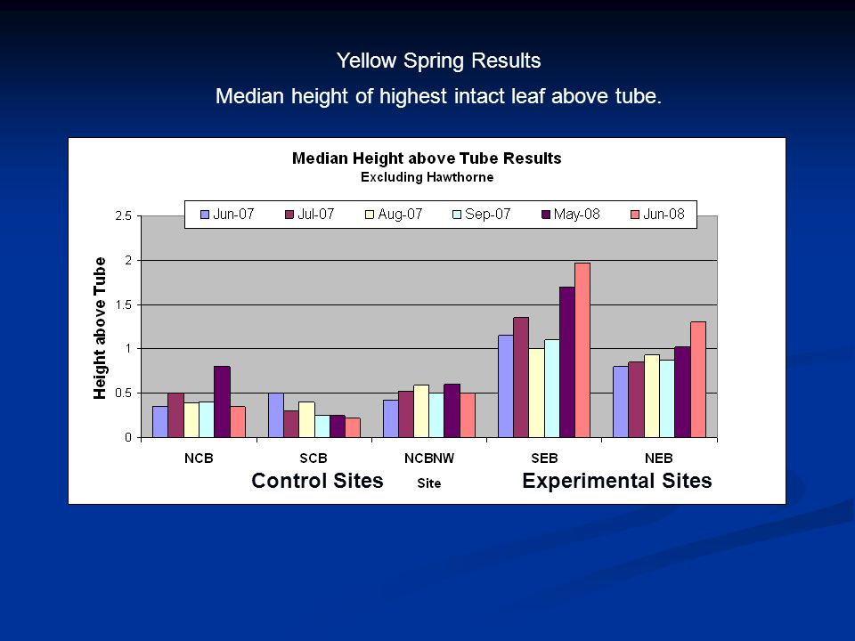 Yellow Spring Results Experimental SitesControl Sites Median height of highest intact leaf above tube.