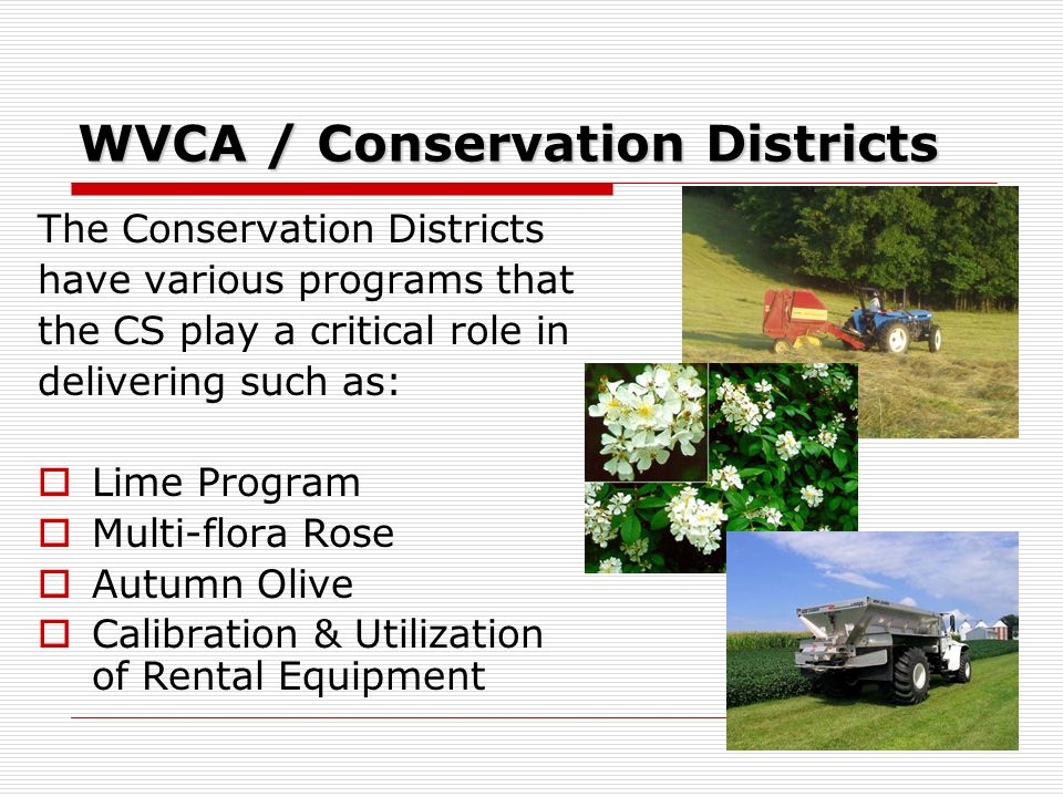 WVCA / Conservation Districts The Conservation Districts have various programs that the CS play a critical role in delivering such as: Lime Program Multi-flora Rose Autumn Olive Calibration & Utilization of Rental Equipment