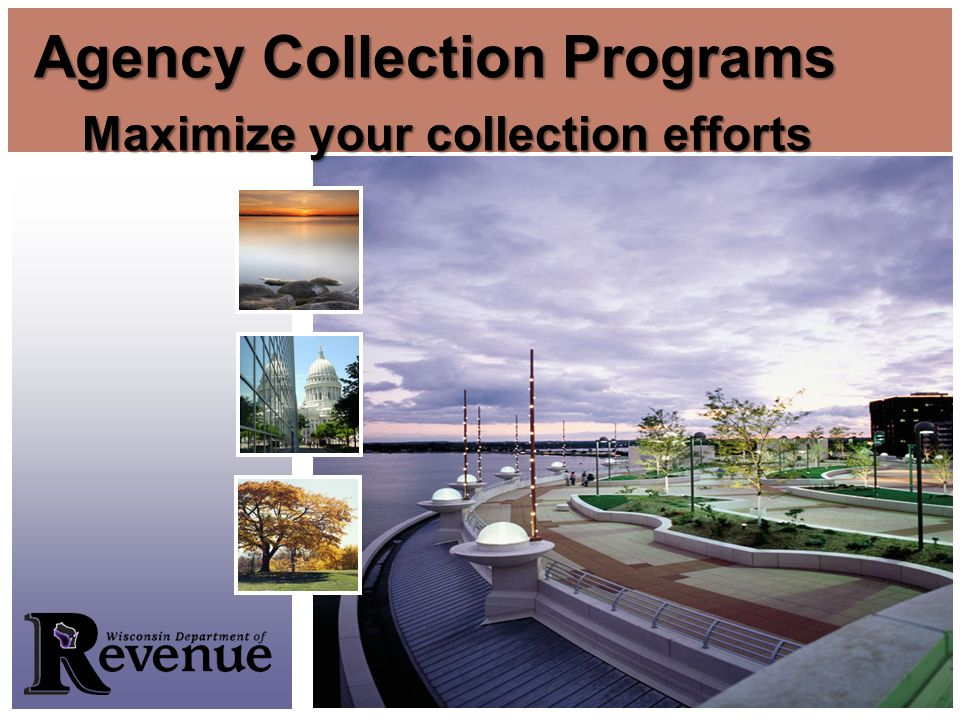 Maximize your collection efforts Agency Collection Programs