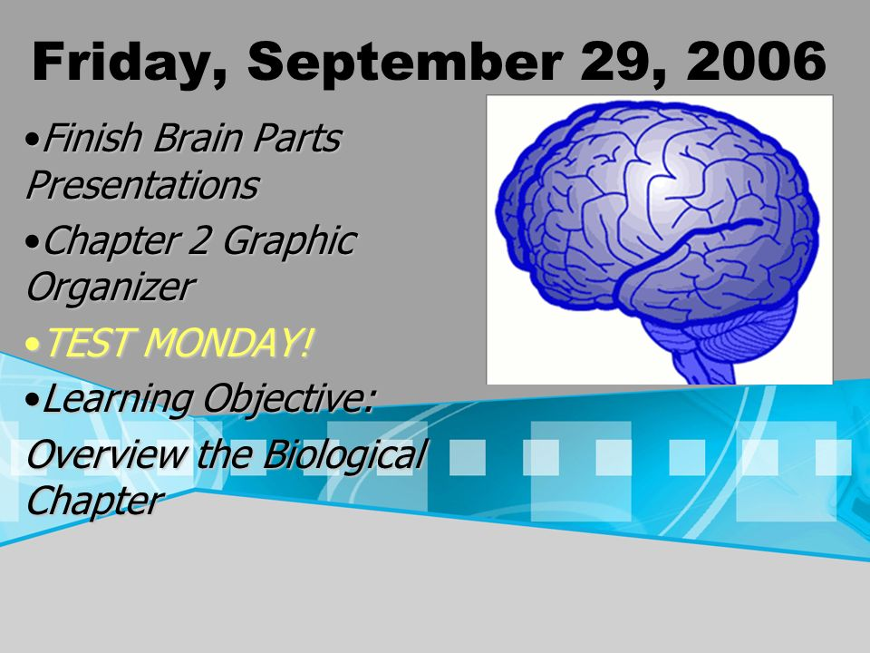Friday, September 29, 2006 Finish Brain Parts PresentationsFinish Brain Parts Presentations Chapter 2 Graphic OrganizerChapter 2 Graphic Organizer TEST MONDAY!TEST MONDAY.