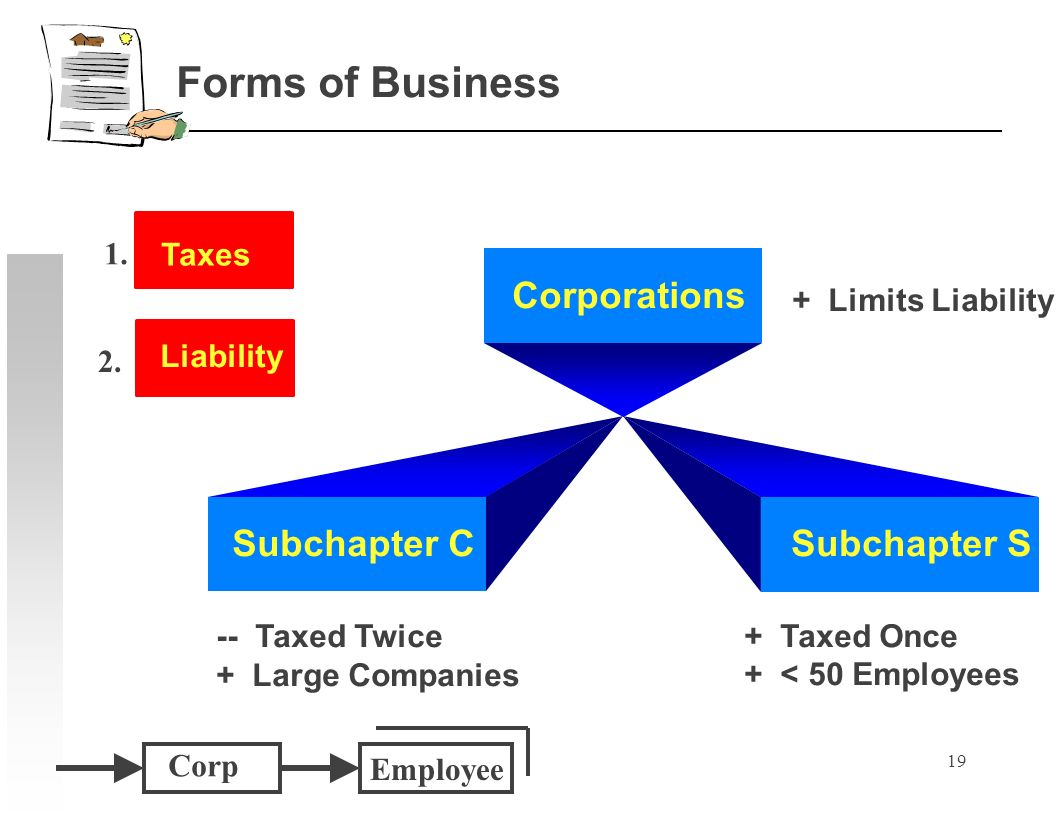 19 Subchapter CSubchapter S -- Taxed Twice + Large Companies + Taxed Once + < 50 Employees Corporations Forms of Business Corp Employee Taxes Liability 1.