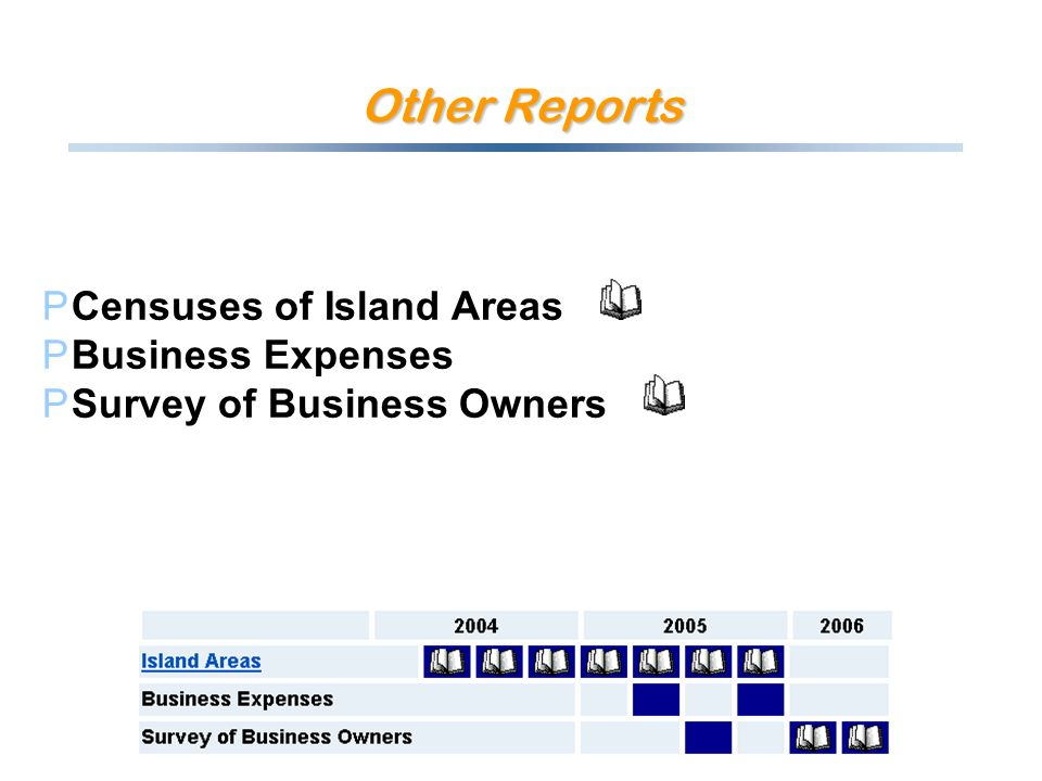 Other Reports PCensuses of Island Areas PBusiness Expenses PSurvey of Business Owners