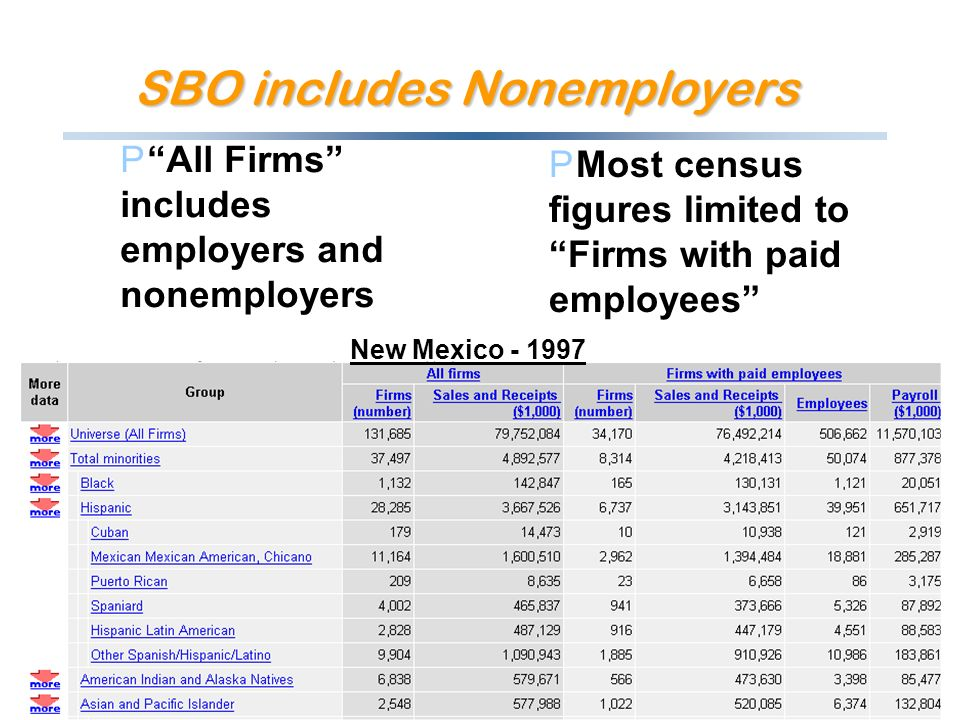 SBO includes Nonemployers PAll Firms includes employers and nonemployers PMost census figures limited to Firms with paid employees New Mexico - 1997