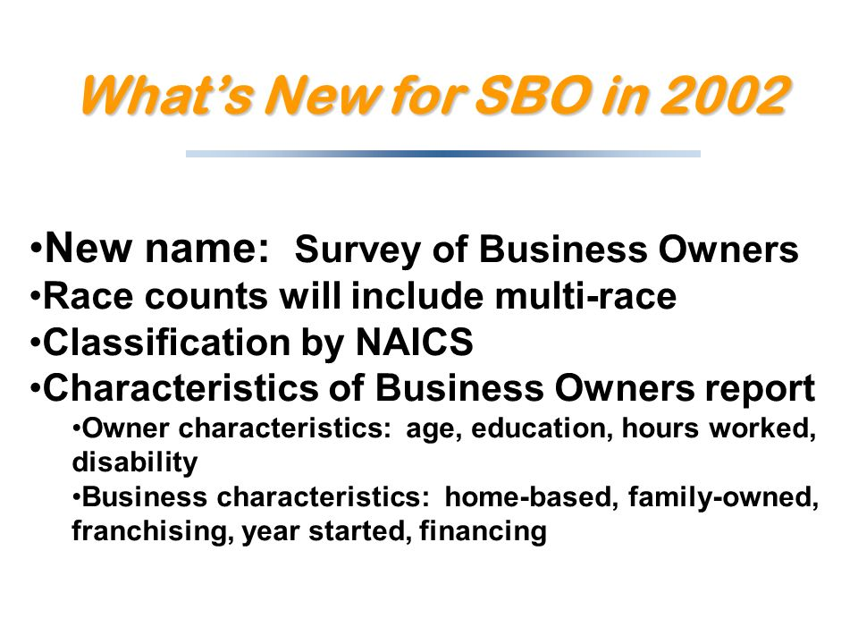 New name: Survey of Business Owners Race counts will include multi-race Classification by NAICS Characteristics of Business Owners report Owner characteristics: age, education, hours worked, disability Business characteristics: home-based, family-owned, franchising, year started, financing Whats New for SBO in 2002