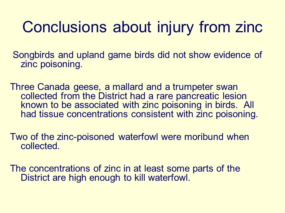 Conclusions about injury from zinc Songbirds and upland game birds did not show evidence of zinc poisoning.