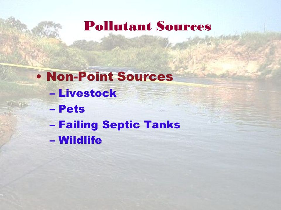Pollutant Sources Non-Point Sources –Livestock –Pets –Failing Septic Tanks –Wildlife