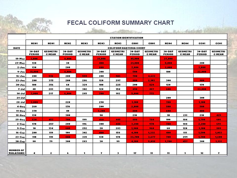 FECAL COLIFORM SUMMARY CHART