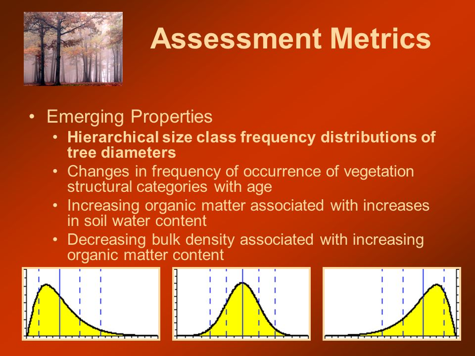 Assessment Metrics Emerging Properties Hierarchical size class frequency distributions of tree diameters Changes in frequency of occurrence of vegetation structural categories with age Increasing organic matter associated with increases in soil water content Decreasing bulk density associated with increasing organic matter content