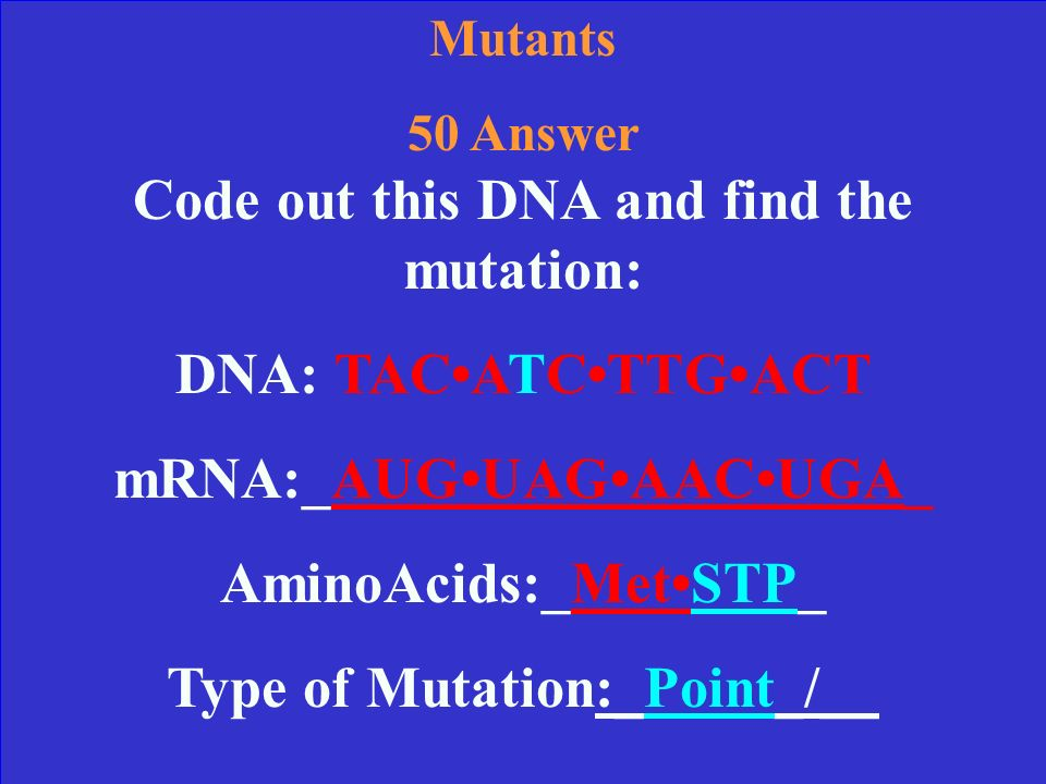 Mutants 50 Your original DNA should produce these amino acids: DNA: TACACCTTGACT mRNA: AUGUGGAACUGA MetTrpAsnSTP Code out this DNA and find the mutation: DNA: TACATCTTGACT mRNA:____________________ AminoAcids:________________________ Type of Mutation:_____________/______________