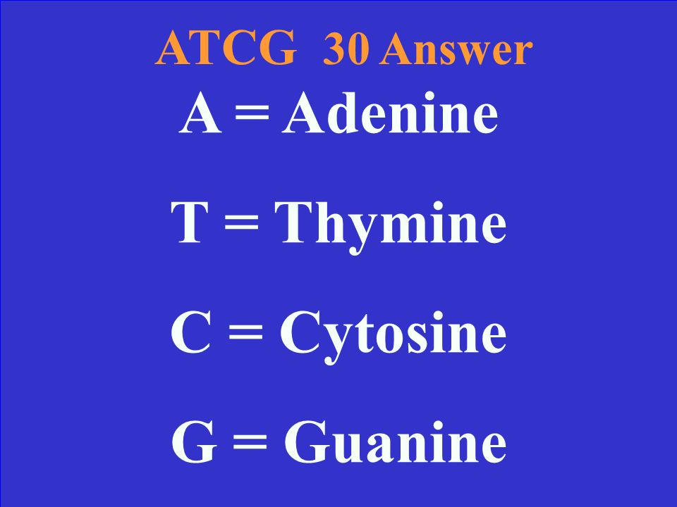 ATCG 30 Name the four bases in DNA and tell me their scientific names.