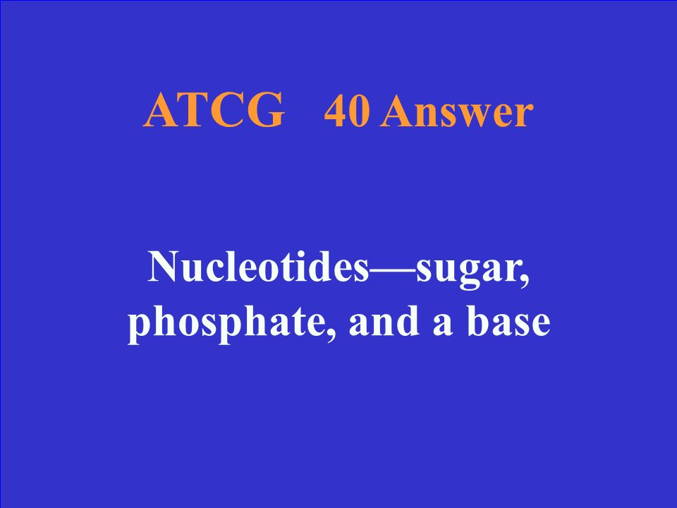 ATCG 40 What are the subunits of DNA And name the three parts of one.