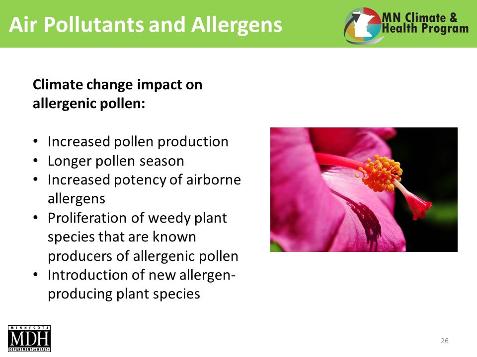 Air Pollutants and Allergens Climate change impact on allergenic pollen: Increased pollen production Longer pollen season Increased potency of airborne allergens Proliferation of weedy plant species that are known producers of allergenic pollen Introduction of new allergen- producing plant species 26