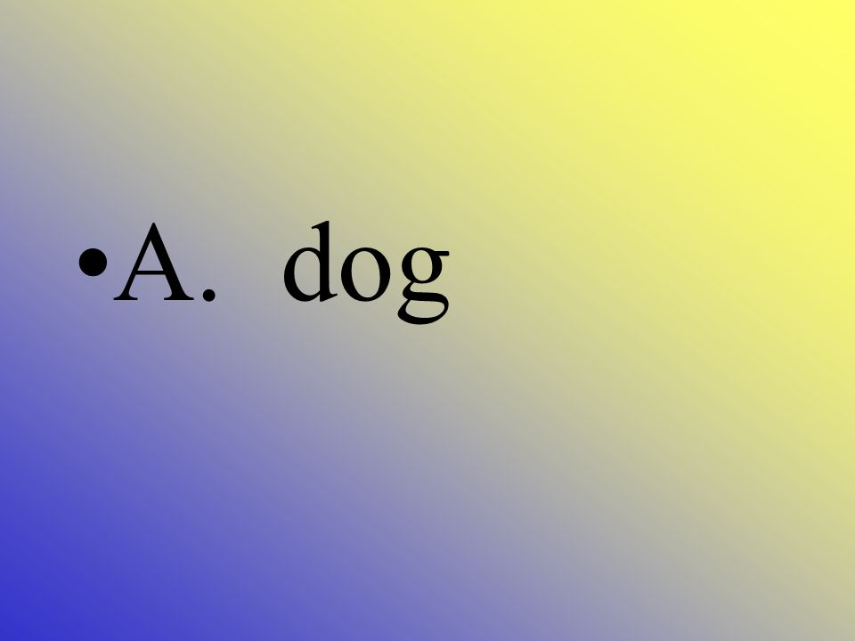 Which is an example of a consumer A. Dog B. Tree C. House D. Car