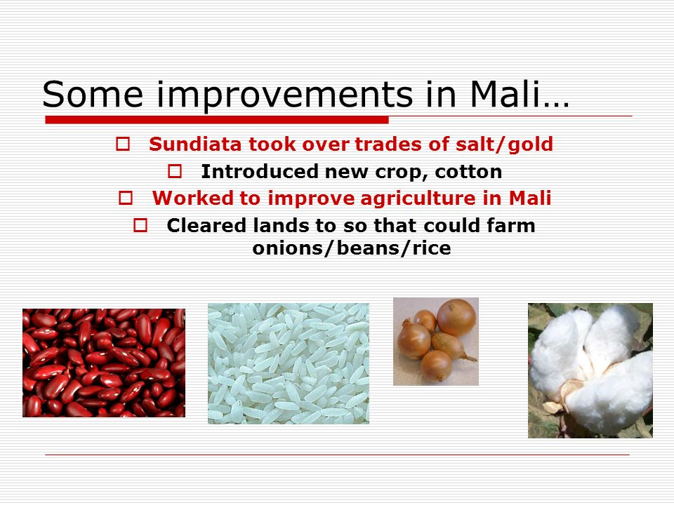 Some improvements in Mali… Sundiata took over trades of salt/gold Introduced new crop, cotton Worked to improve agriculture in Mali Cleared lands to so that could farm onions/beans/rice