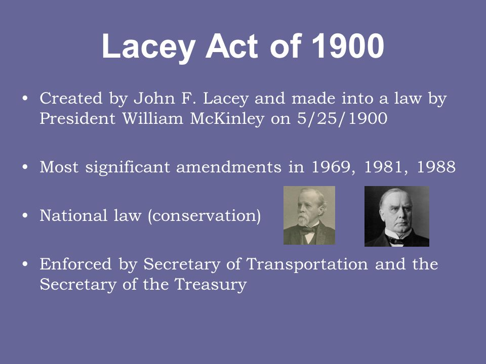 Lacey Act of 1900 Created by John F.