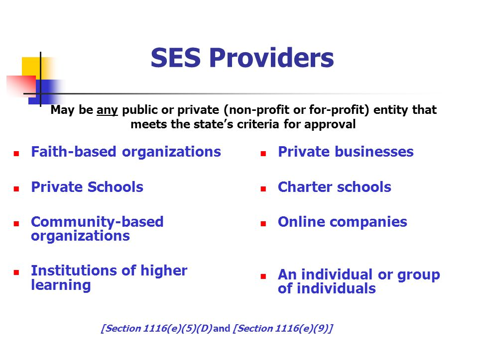 SES Providers Faith-based organizations Private Schools Community-based organizations Institutions of higher learning Private businesses Charter schools Online companies An individual or group of individuals May be any public or private (non-profit or for-profit) entity that meets the states criteria for approval [Section 1116(e)(5)(D) and [Section 1116(e)(9)]