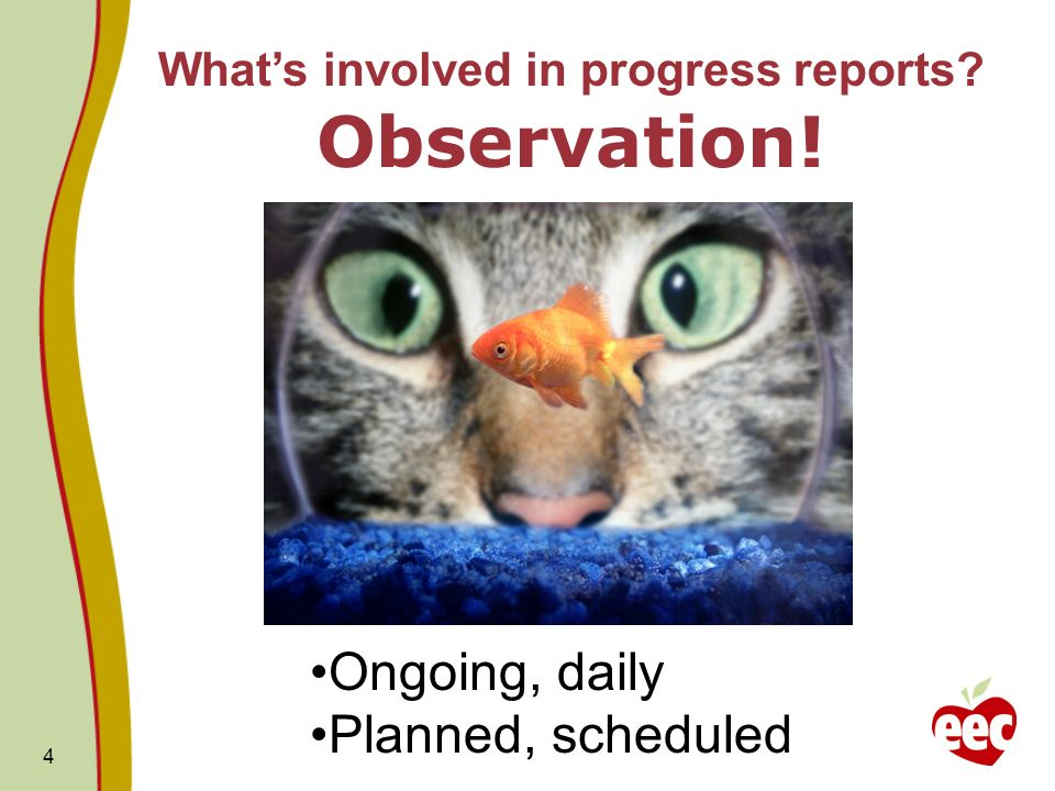 4 Ongoing, daily Planned, scheduled Whats involved in progress reports Observation!