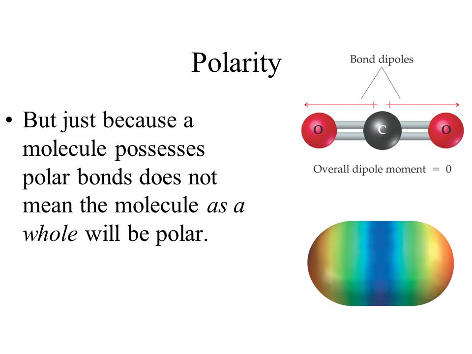 Polarity But just because a molecule possesses polar bonds does not mean the molecule as a whole will be polar.
