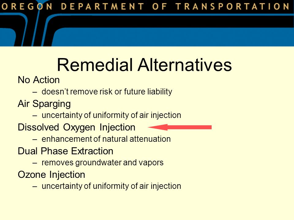 Remedial Alternatives No Action –doesnt remove risk or future liability Air Sparging –uncertainty of uniformity of air injection Dissolved Oxygen Injection –enhancement of natural attenuation Dual Phase Extraction –removes groundwater and vapors Ozone Injection –uncertainty of uniformity of air injection