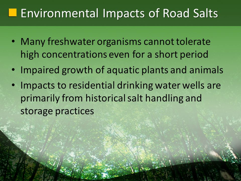 Environmental Impacts of Road Salts Many freshwater organisms cannot tolerate high concentrations even for a short period Impaired growth of aquatic plants and animals Impacts to residential drinking water wells are primarily from historical salt handling and storage practices