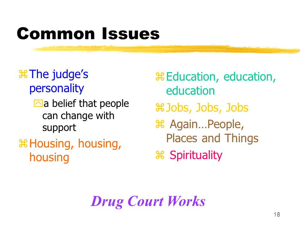 18 Common Issues zThe judges personality ya belief that people can change with support zHousing, housing, housing z Education, education, education z Jobs, Jobs, Jobs z Again…People, Places and Things z Spirituality Drug Court Works